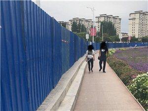 通往植物园的那条路堵得也太好了吧