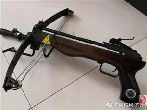 缉枪治爆!桐城警方收缴枪支4支,子弹29发...