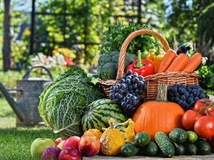 慢性鼻炎的日常保健及调养方法――饮食保健篇