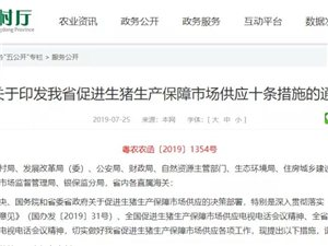 广东下达养猪令!茂名指标513万头!全省最高!