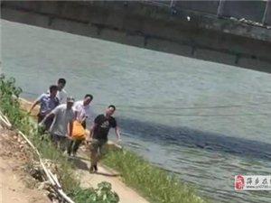 萍乡湘东河里发现一具尸体(视频)