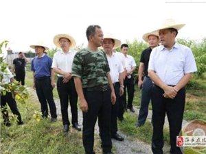 乡村振兴正当时!如今,萍乡的农村就是这么不一样...…