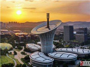 """未来科技城的""""马蹄莲"""""""