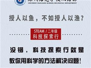 少儿编程和AI课程――――-滁州海亮学校常规课