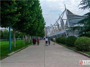 外地人来澳门金沙网址站,把奥林匹克公园拍的这么美!