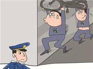 仅3小时!潢川民警破获一期盗窃案,犯罪嫌疑人在家中被抓获...