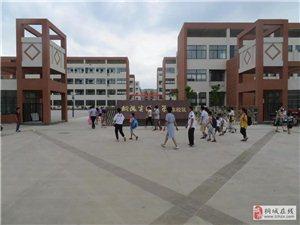 桐城又一批小学一年级招生公告来了