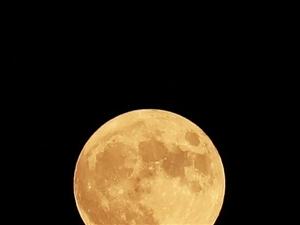 昨晚的月亮很圆呀。