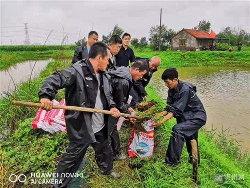 狂�L�E雨�^后,博�d��翩�41��村自�l�e行升旗�x式