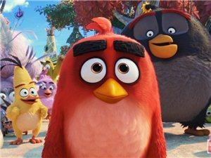 新用户19.9元起,《愤怒的小鸟2》十周年爆笑回归萌贱无敌|恒推荐!