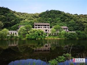 河南这个村被评为中国最美村庄,风景如画景色宜人,还不要门票