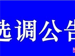 公告:2019年寻乌县公开选调县城初中、小学、寻乌职校教师70人
