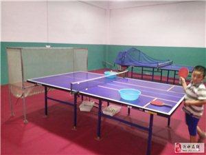 想练乒乓球的来这里看看!