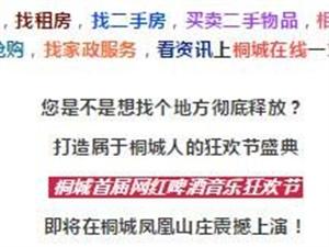 桐城首届网红音乐啤酒狂欢节,9月6日开幕!万斤蟠桃免费送,门票抽金条!