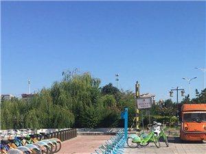 哪位老铁知道路边新建的蓝色架子是做什么的?
