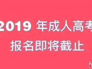 2019年成考�r�g