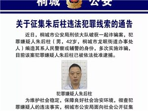 关于征集桐城朱后柱违法犯罪线索的通告