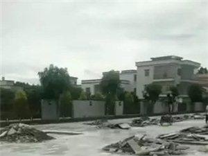 高州富豪刘杰夫超豪大宅被要求复绿,是小人太多还是另有内情?