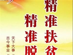 【绿野书院】丁群练:【为了最后一个贫困户】(小说连载上)