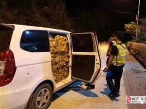 �雄一男子非法�\�烤��800公斤,被警方查�@...