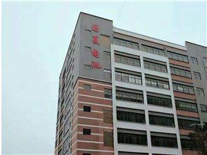 秋季 贵州国夏新能源科技有限公司招聘