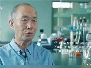 """填�a��家空白,人民日�簏c�!�v�R店""""牛人""""被���人二等功!"""