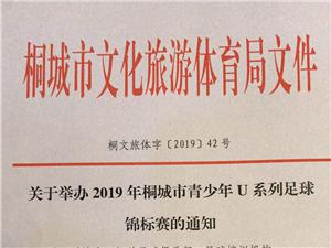 关于举办2019年桐城市第三届青少年足球赛通知