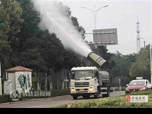 宿州市园林绿化管理局防治歼灭白背飞虱在行动