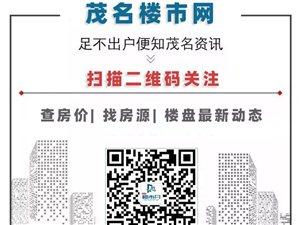 双向八车道 | 沈海高速阳江至茂名段最新进展……