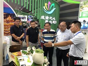 盐亭文创产品参加第六届四川国际旅游交易博览会