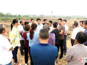 刘中汉在调研东部新城建设   项目建设要稳健推进