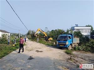 龙腾街道蔡店村:发挥乡村能人优势,助力人居环境整治