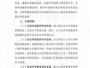 桐城市学前教育管理体制改革的实施意见