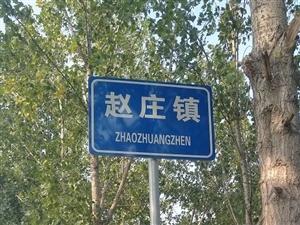 美丽乡村行|走进赵庄镇,开启魔幻之旅!
