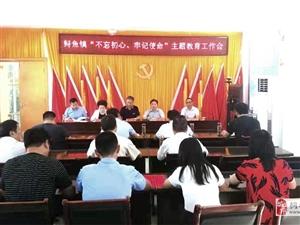 鲟鱼镇:主题教育落实到每个支部、每个党员