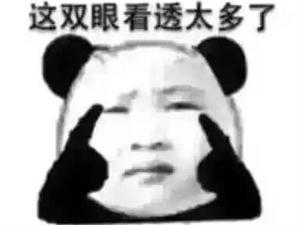 上�子做了什么孽,�@�子要�o��小�W生��作�I?!