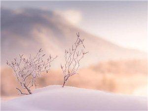 """�S都,真的�]有秋天,有的地方已�""""下雪""""了"""