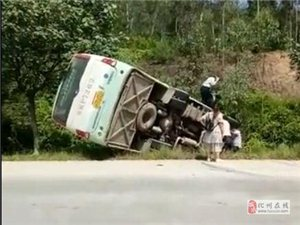 【惊吓】化州一客车翻落路边,有乘客从车窗爬出……