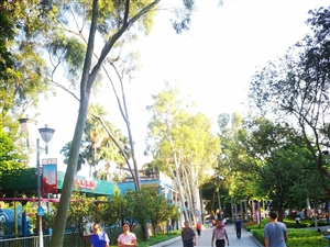 台湾人民公園晨跑的市民越來越多了!!!