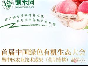 首届中国绿色有机生态大会暨中医农业技术成果(蒙阴蜜桃)品鉴会