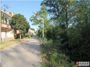 村民自发捐资安装太阳能路灯点亮乡村夜空