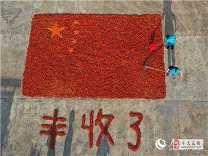 江西寻乌:2000余公斤辣椒摆成巨幅国旗庆丰收