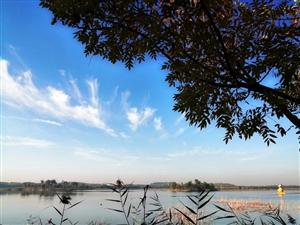 博�d麻大湖―秋意��