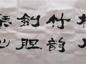 ;鲁阳先生书法作品先生