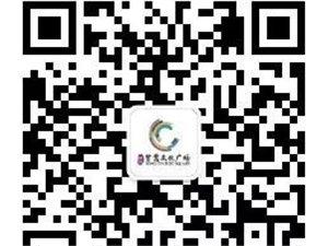 【绿洲・望嵩文化广场】今朝辉煌 锦绣10.1!