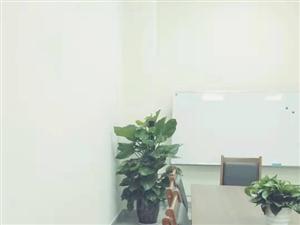 室��[放植物,��I的,�是找�A亮�@�-金雁樽煌��I店��景拍�z