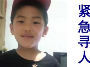 紧急寻人!博兴一8岁男孩走失,有见到的与家人联系!