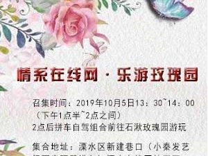 【活动召集】情系在线网,乐游玫瑰园
