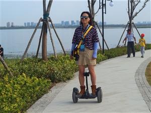 滁州市的大明湖――水面好大,岛屿太小
