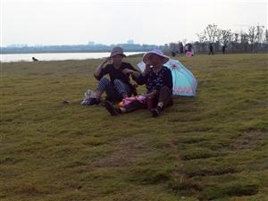 滁州市的大明湖――水面好大,�u�Z太小
